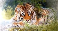 Спицы для вязания 2015 новый Diy 3d алмаз живопись неторопливо тигр домашнего декора компл