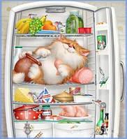 Поделки алмаз живопись полный вышивка кот в холодильник 3d мозаики квадратных алмазы милые