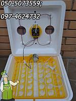 Автоматический Инкубатор с тэновым нагревом Веселое Семейство (авто переворот яиц)