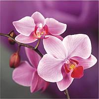 Картина для рисования камнями стразами Diamond painting Алмазная вышивка алмазами мозаика орхидея