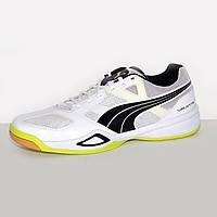 Кроссовки для гандбола, тенниса мужские Puma Virante LT 103354-01 пума
