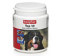 Витамины для собак Beaphar 12542 Top 10, 180 таблеток