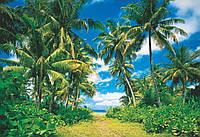 Настенные обои 366х254 см Солнечный остров Код: 273