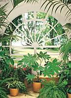 Настенные обои Зимний сад Код: 322