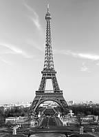 Настенные обои Эйфелевая башня Код: 386