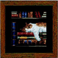 """Набор д/вышивания VERVACO """"Кошка, спящая на книжной полке"""""""