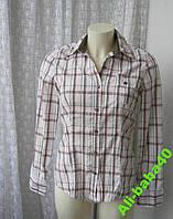 Блузка рубашка женская хлопок бренд PDI Jeans р.44