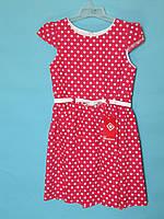 Летнее детское платье Prybylak красное в горохи