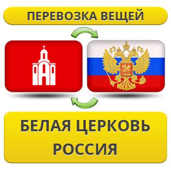 176354703_w640_h640_1.29_belaya_ts__uslu