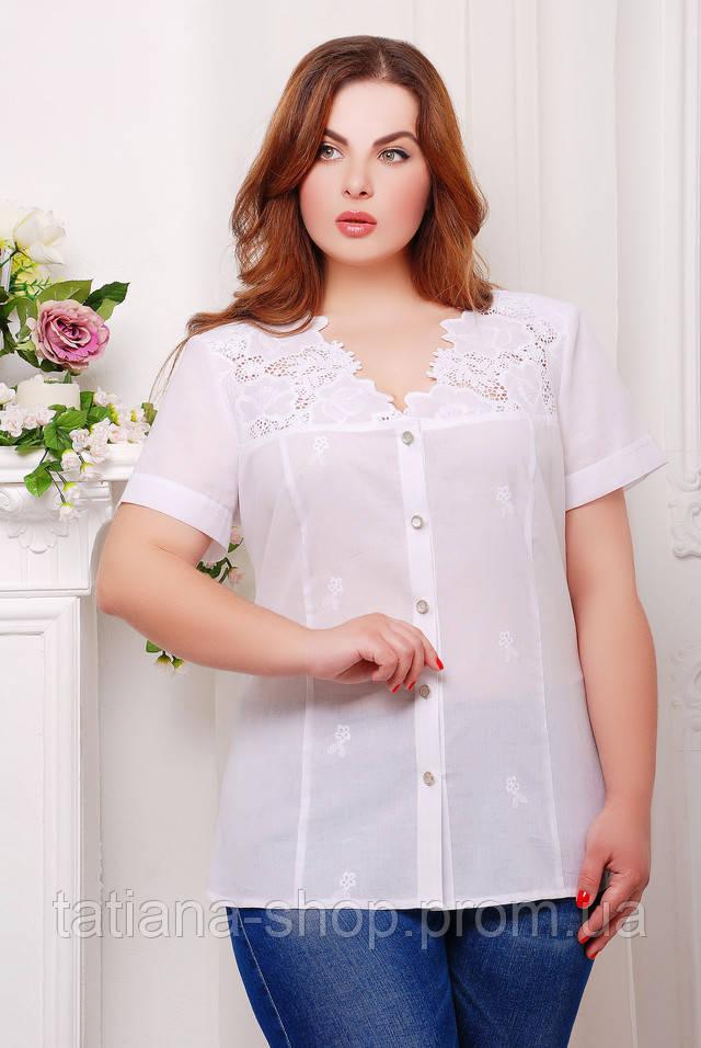 Белая Блузка Большого Размера Доставка