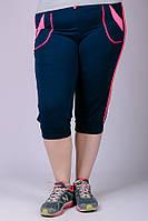 Женские спортивные трикотажные бриджи большие размеры (темно-синий)