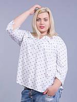 Рубашка белая с синим рисунком, в размерах (большие размеры 50-56)