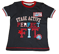 Детская футболка (батник) для мальчика с надписями (буквами, аппликацией)  серая (Турция)