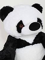 Панда, 90 см