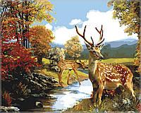 Раскраска по номерам Олени  у ручья40 х 50 см(MS117)