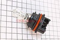 Лампа для фары PH11 12V 40/40W (AF35/48) пластмассовый цоколь для мотоциклов, автомобилей