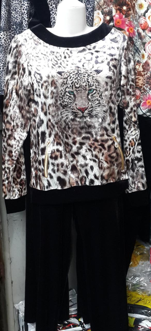 Женская Одежда Интернет Магазин В Турце Лосограда