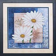 Набор для вышивания Магия Канвы Б-039  Цветы любви 1