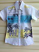 Модная белая рубашка с короткими рукавами для мальчиков Beach guard