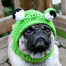 головные уборы, шарфы для животных