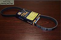 Ремень генератора Daewoo Lanos 1.5, 5РК-870, Hola PH 5870