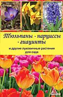 Тюльпаны нарциссы гиацинты и другие луковичные растения для сада