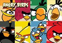 "Магнит сувенирный ""Angry Birds"" 16"