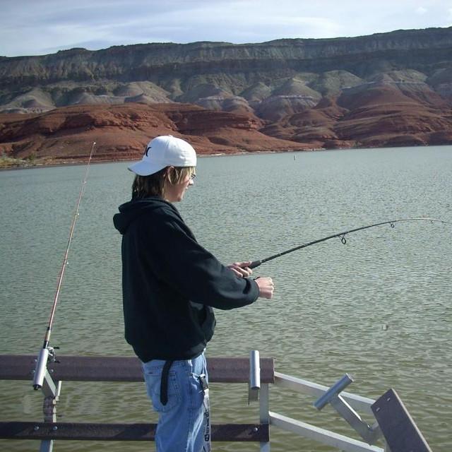 купить прикормку для рыбы fishhungry