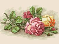 Схема для вышивки на канве Чайные розы РКан 3014
