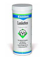 Витаминно-минеральный комплекс для собак Canina Caniletten 120307 активный кальций, 150 таблеток
