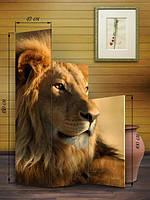 Ширма Ступенькой «Лев»