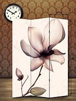 Ширма 180х126  «Нежный цветок»