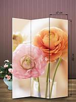 Ширма 180х126 «Тандем роз»
