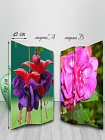 Ширма двусторонняя, Сочные бутоны цветов