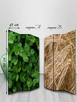 Ширма двусторонняя, Разные растения