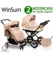 Коляска классическая Trans baby WinSum