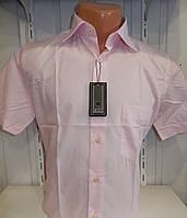 Рубашка мужская однотонная розовая Турция
