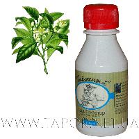 """Бергамот"", ароматизатор для сауны и бани (100 мл) ."