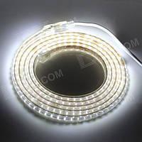Dilux - Светодиодная лента SMD 3014 60шт/м IP67 220В белая