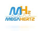 Интернет — магазин электроники «MegaHertz»