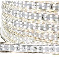 Dilux - Светодиодная лента SMD 2835 180шт/м IP67 220В белая