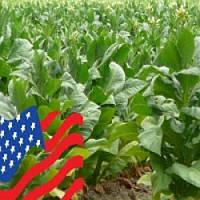 USA blend - жидкость для электронных сигарет 30 мл
