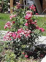 """Опора для садовых растений, кустов. """"Конус"""" 125 см"""