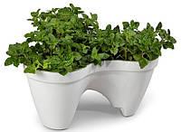 Горшок для цветов  IVY planter бело-зеленый