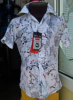 Рубашка короткий рукав белая с рисунком