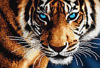 """Схема для вышивки бисером на атласе (животные) """"Тигр"""" Серия Элит"""