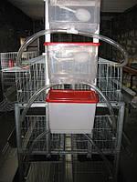 Клетка для кур несушек НО-120