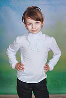 Трикотажная школьная блуза белая, фото 1