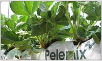 Кокосовые маты для выращивания растений кокосовый субстрат Pelemix 100*23*8