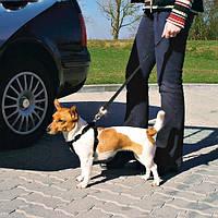 Тrixie Car Harness L автомобильная шлейка с ремнем безопасности 70-90см
